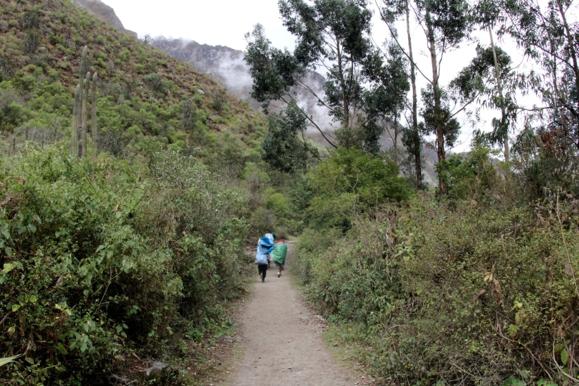 Porters run most of the trail with close to 20 kilos on their back.