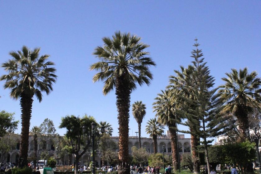 Arequipa's Plaza de Armas