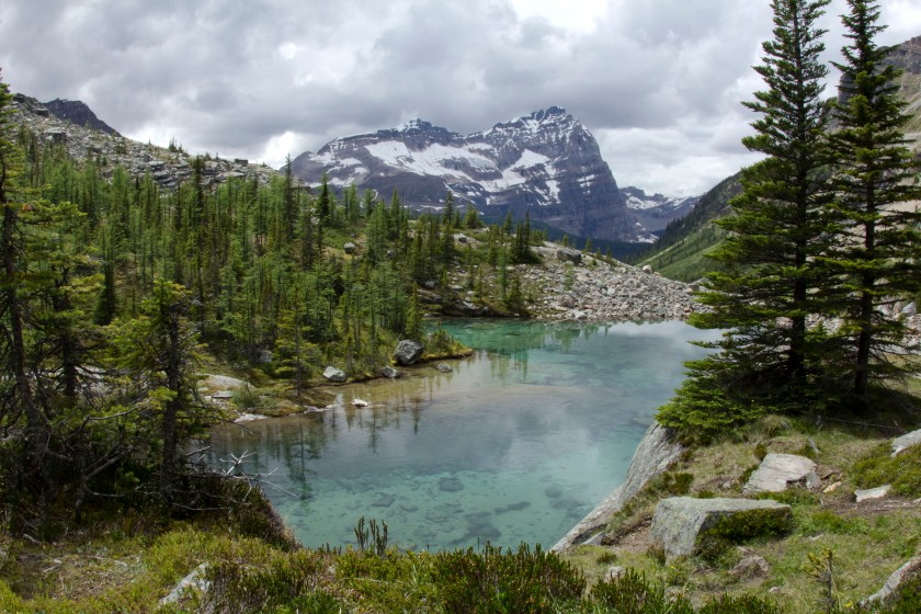 One of the many lakes in the Lake O'Hara region.