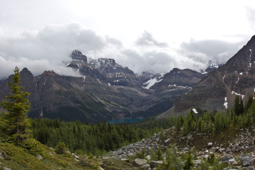 Looking towards Lake O'Hara from the Odaray Grandview