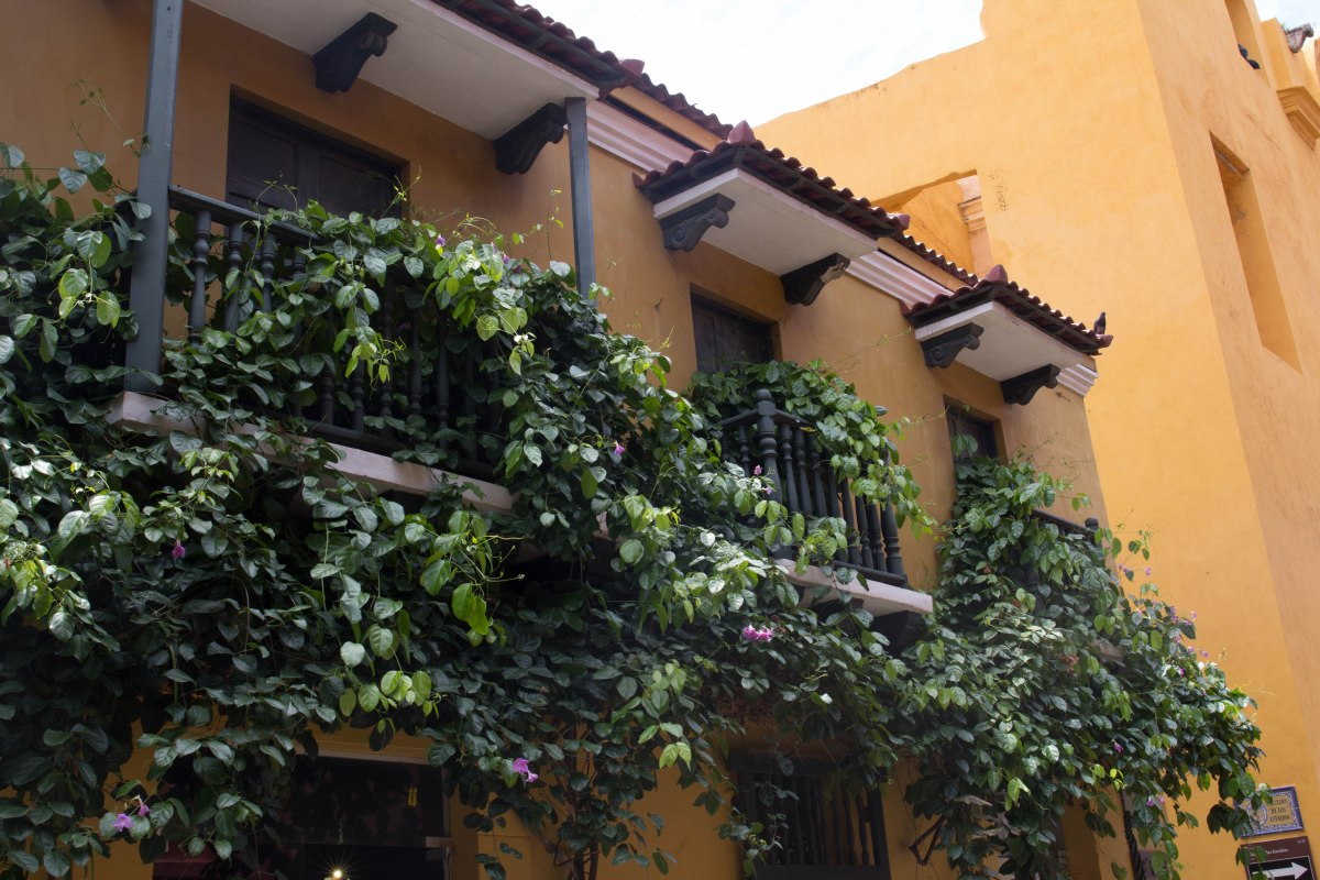 Love in the Time of Cartagena